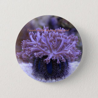 Reef collections button #3