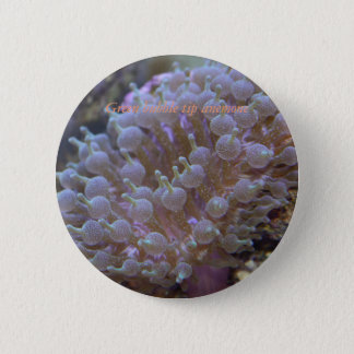 Reef collections button #4