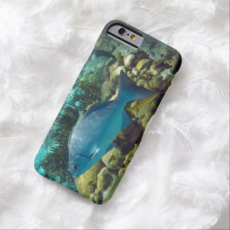 Reef Fish Barely There iPhone 6 Case
