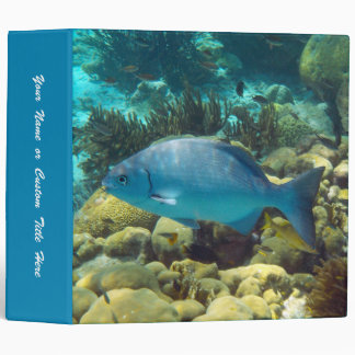 Reef Fish Binder