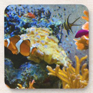 reef fish coral ocean drink coasters