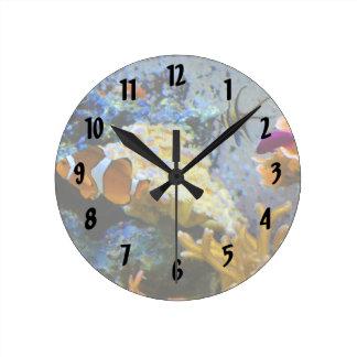 reef fish coral ocean round clock