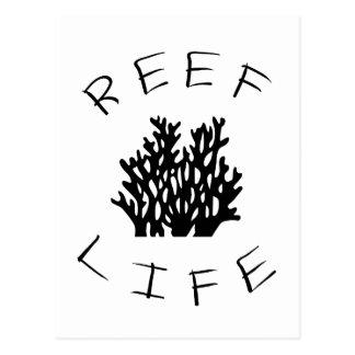 Reef Life Postcard