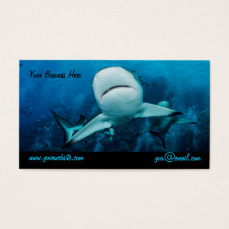 Reef Shark Business Card