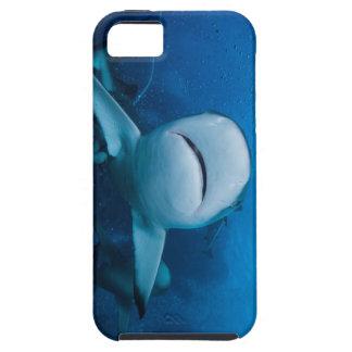 Reef Shark Great Barrier Reef Coral Sea iPhone 5 Case
