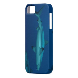 Reef Shark Great Barrier Reef Coral Sea iPhone 5 Covers