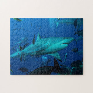 Reef Shark Great Barrier Reef Coral Sea Jigsaw Puzzle