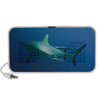 Reef Shark Great Barrier Reef Coral Sea Mini Speaker