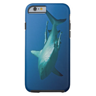 Reef Shark Great Barrier Reef Coral Sea Tough iPhone 6 Case