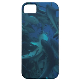Reef Shark on the Great Barrier Reef iPhone 5 Cases