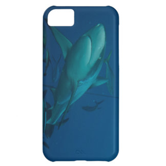 Reef Shark on the Great Barrier Reef iPhone 5C Cover