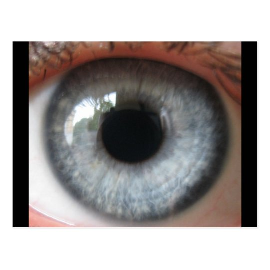 Refelection in a blue eye postcard