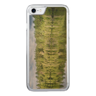 Reflecting lake carved iPhone 7 case