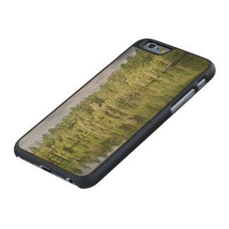 Reflecting lake carved® maple iPhone 6 slim case