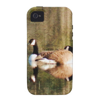 Reflection Case For The iPhone 4