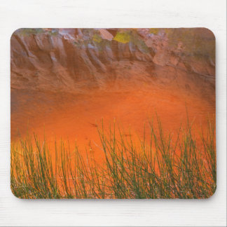 Reflection in Pool Canyon | Glen Canyon, UT Mouse Pad