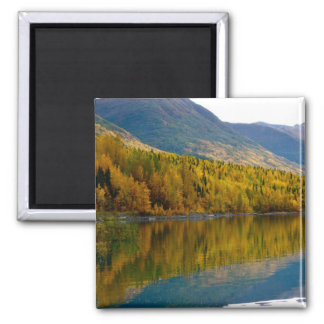 Reflection of Foliage Magnet