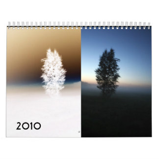 Reflections, 2010 wall calendars
