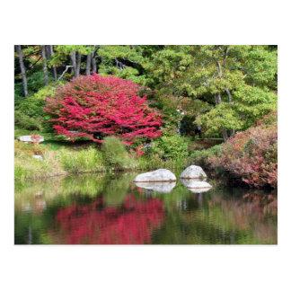 Reflections in an Azalia Garden Post Card