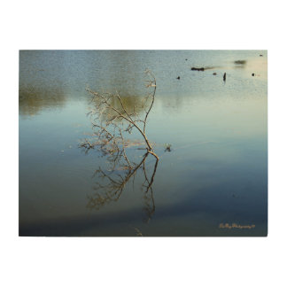 Reflections In Nature Wood Print