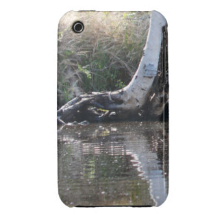 Reflections iPhone 3 Covers
