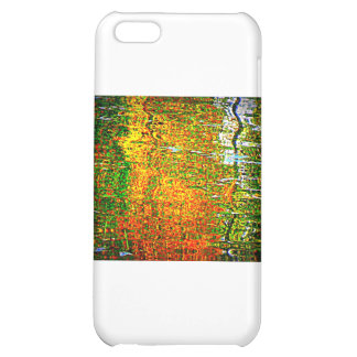 Reflections iPhone 5C Cases