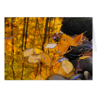 Reflections of Autumn Gold Card