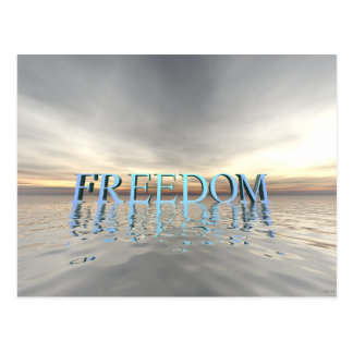 Reflections of Freedom Postcard