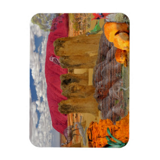 REFLECTIONS OF OZ    Australian Outback Magnet