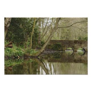 Reflections On Tarvit Pond Photo Print