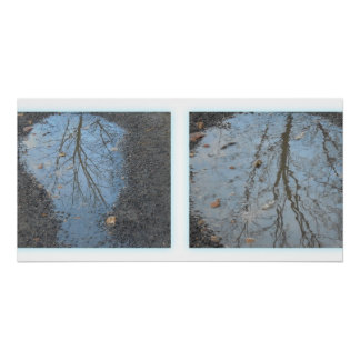 Reflections. The tree in puddles. Perfect Poster