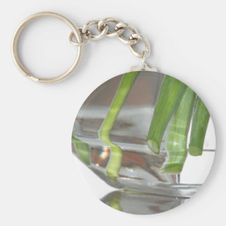 Reflections Too keychain