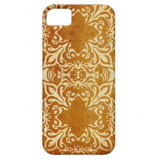 Reflective India iPhone 5 Case