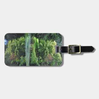 Reflective spring pond luggage tag
