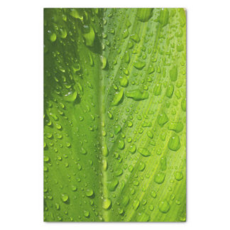 Refreshing  Raindrops Tissue Paper