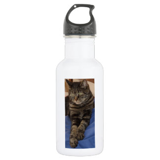Regal Dave Water Bottle