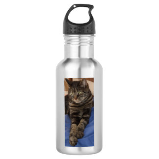 Regal Dave Water Bottle (532 ml), Stainless Steel