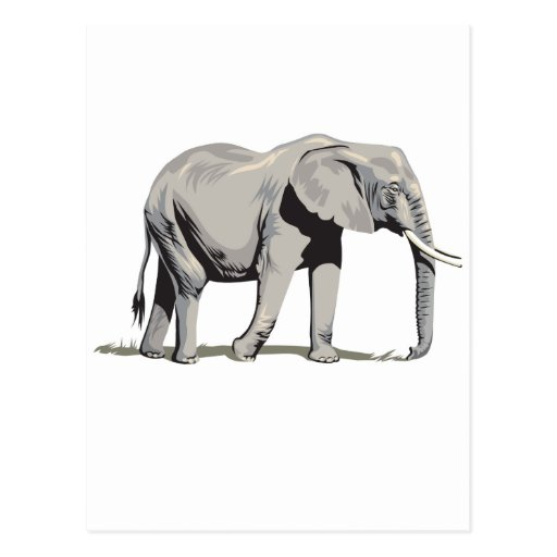Regal Elephant Post Cards