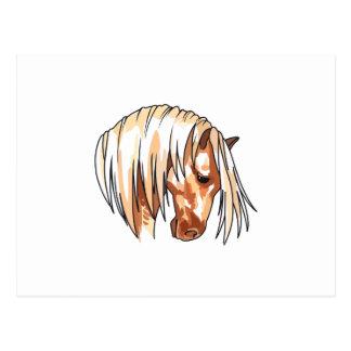 REGAL HORSE HEAD POST CARDS
