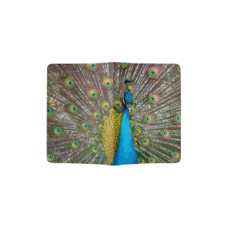 Regal Peacock Bird with Teal and Gold Feathers