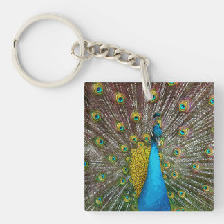 Regal Peacock Bird with Teal and Gold Plumage Single-Sided Square Acrylic Keychain