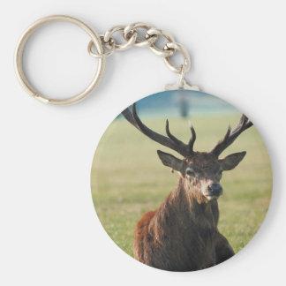 Regal Red Deer Key Chain