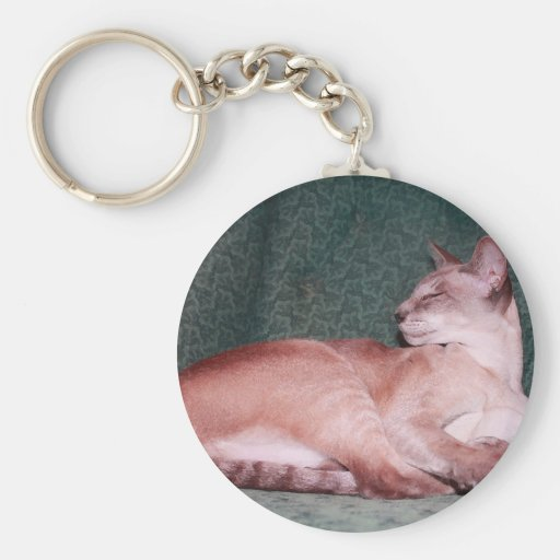 Regal Siamese Cat on Teal Chair Key Chain