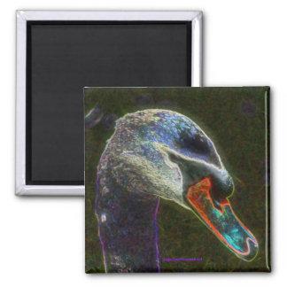 Regal Swan Digital Art Nature Photo Magnet