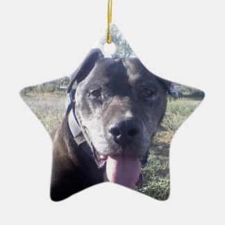 Reggie ornament