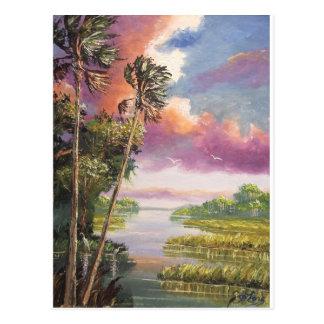 Région forestière inexploitée venteuse de palmiers carte postale