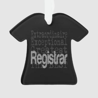 Registrar Extraordinaire Ornament
