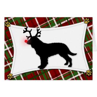 Reindeer American Water Spaniel Christmas Card