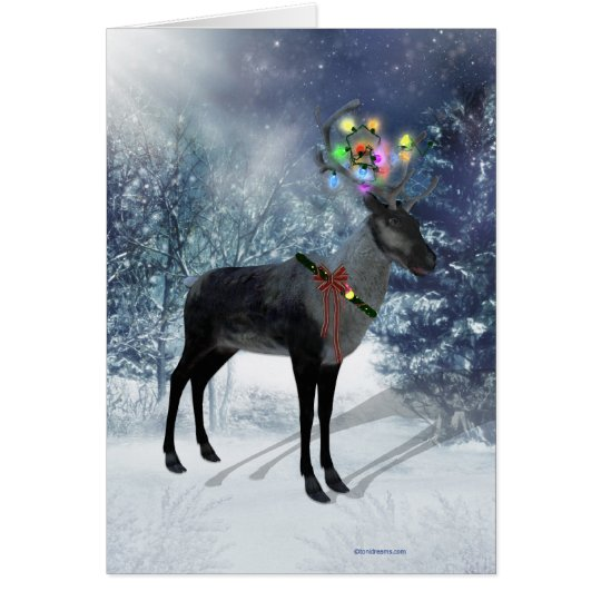 Reindeer and lights Card
