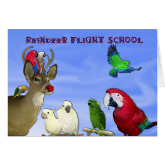 Reindeer Flight School Card